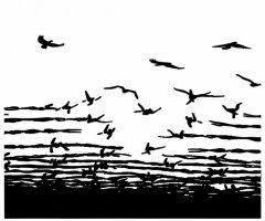 Liberté pour tou.tes les prisonnier.es !